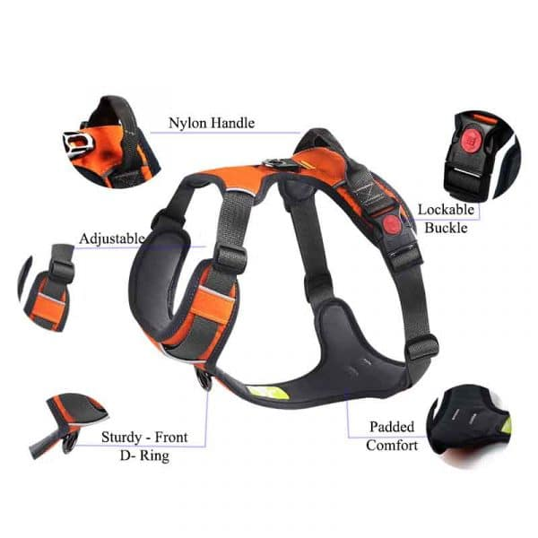no-pull-dog-harness-comfortable-and-adjustable-with-back-clip