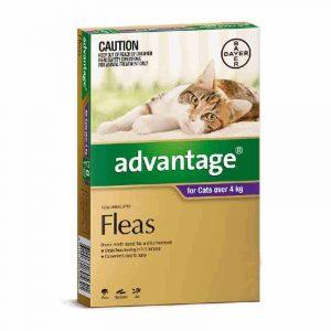 advantage-cat-flea-treatment-for-cats-over-4kg-purple-4-pack